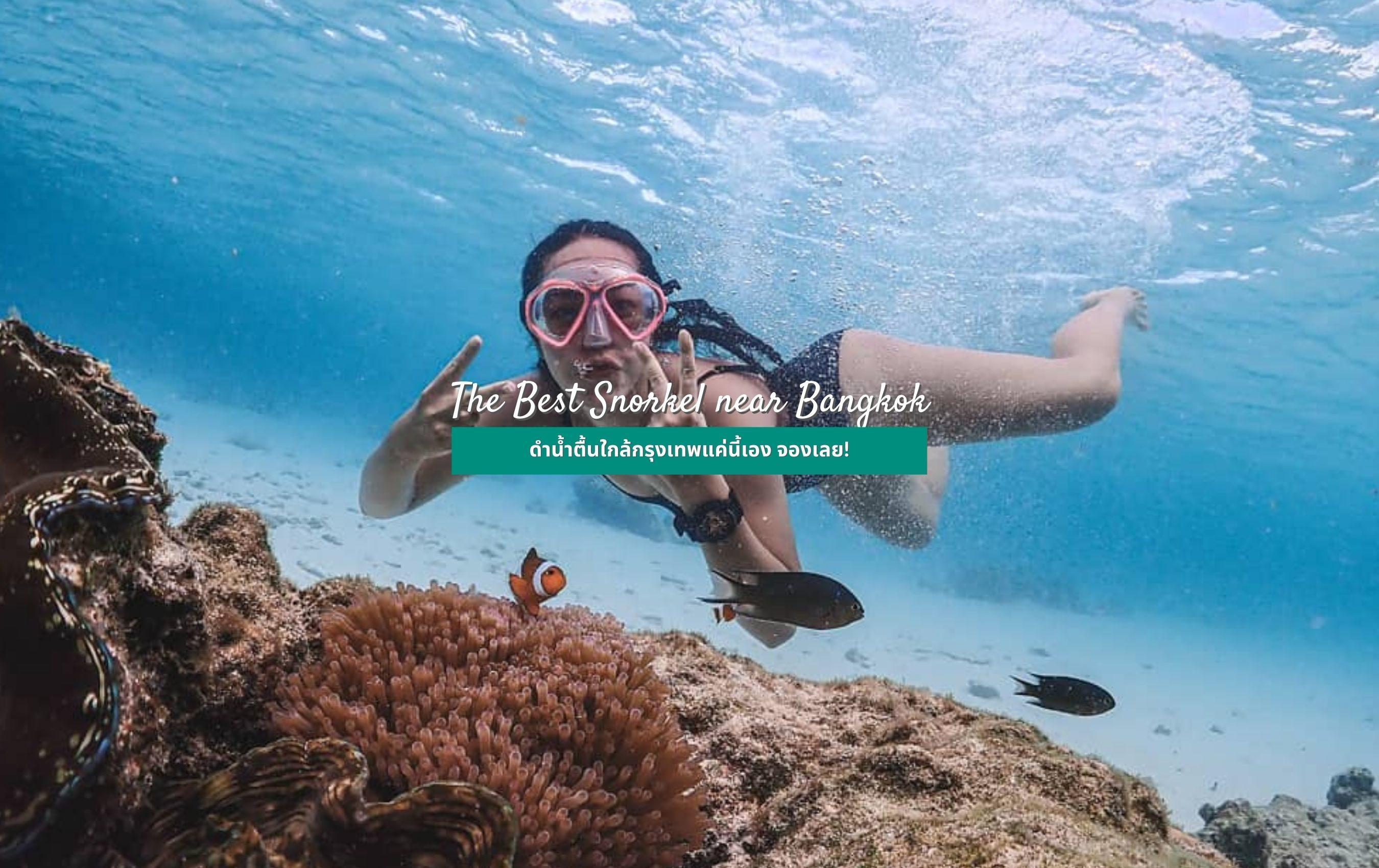 gojo tours snorkeling
