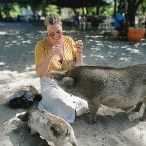 Pig Island Koh Samui