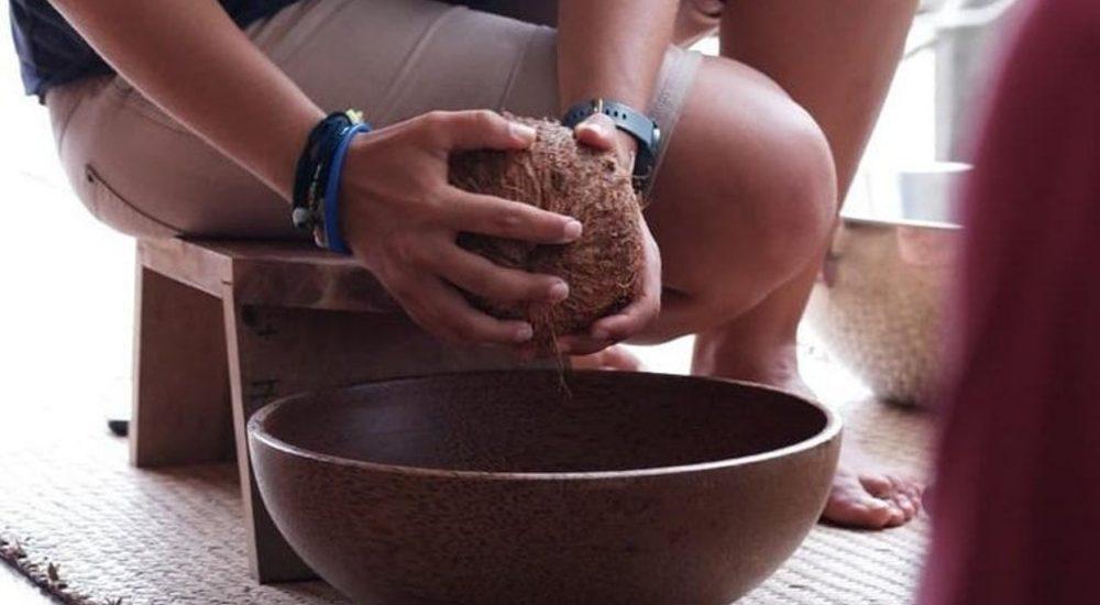 coconut farm samui gojo